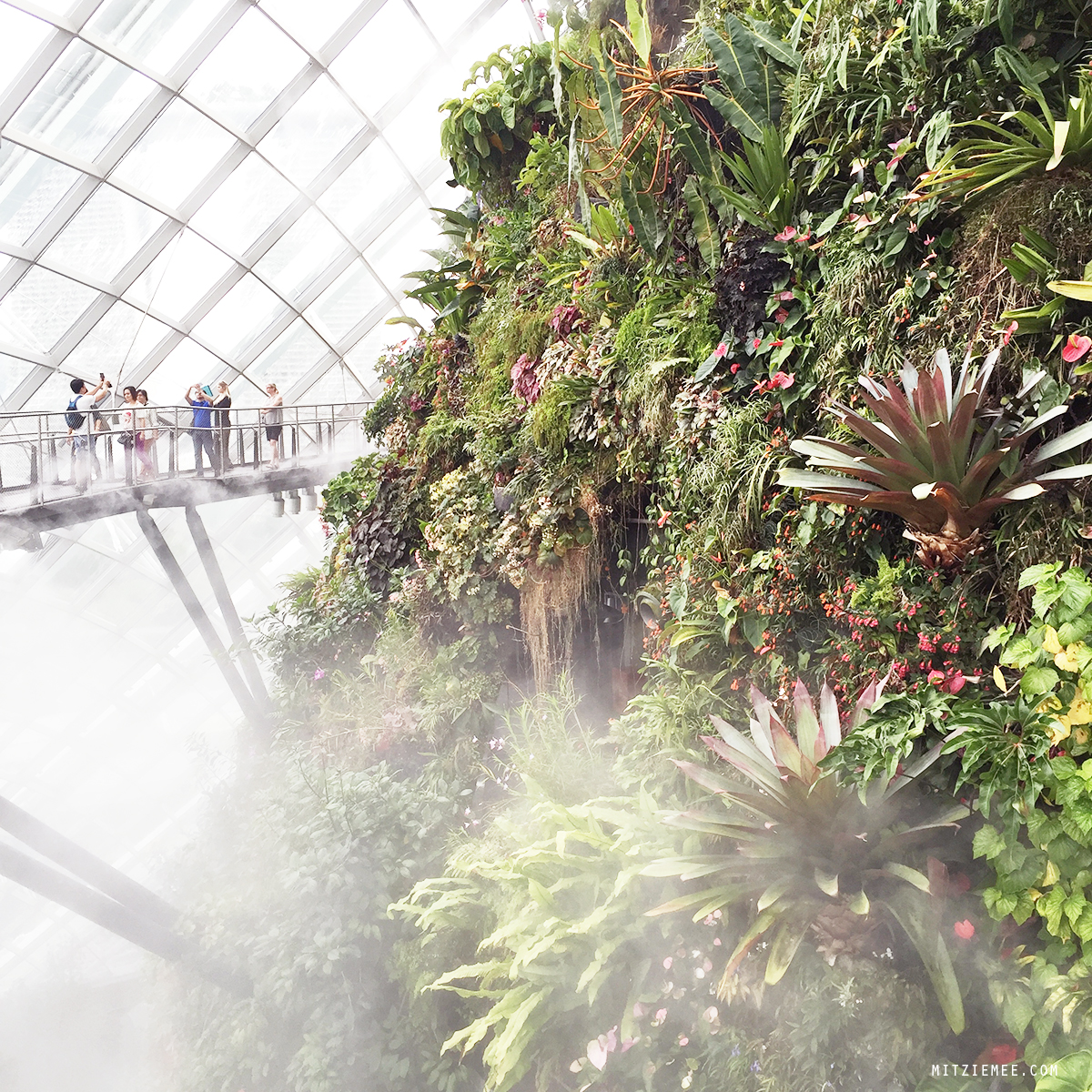 Cloud Forest at Gardens by the Bay, Singapore